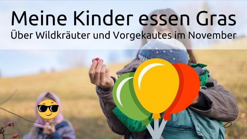 Meine Kinder essen Gras. Über Wildkräuter und Vorgekautes im November.